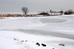 winter op de Oostvaardersdijk bij een bevroren IJsselmeer,28 december 2010 (wally nelemans) Tags: winter holland december nederland 2010 oostvaardersdijk kruiendijsijsselmeer