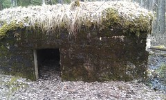 Bunker in the city forest. Pic.2 (Scratchblack) Tags: 1920s house history forest moss cool homeless bunker hide flyers covering intresting cityforest skyddsbunker