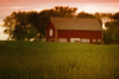 Morning Barn (mckenziemedia) Tags: blur green field barn canon dof bokeh mark ii 5d 28 pentacon six f28 oof sonnar 180mm