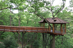 Tree House 1 (yuan2003) Tags: park pennsylvania scranton aug nay