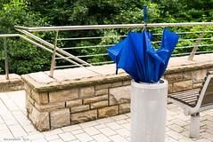 last exit for a blue umbrella (KLAVIeNERI) Tags: blue rain umbrella photographer düsseldorf leicaforum leicax1 leicaimages ilovemyleica lightroom5
