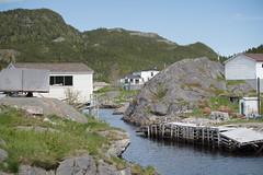 Trouty (john.king) Tags: canada newfoundland places johnking newfoundlandandlabrador bonavistapeninsula trouty trinitytb