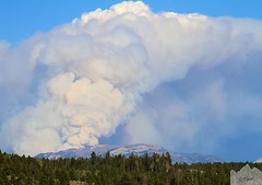 Fire from the Base of Signal Mountain (Wycpl) Tags: forestfire grandtetonnationalpark