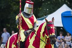 Jousting & Falconry (Mark R Farrington) Tags: england castle heritage history canon photography eos tudor knights 7d essex jousting falconry braintree 70300isusm medaevil 1755isusm northessex headinghamcastle desc2012