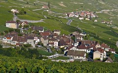 Riex Summer 2012 (Riex) Tags: summer landscape switzerland village suisse vineyards paysage vignes vignoble ete vaud lavaux schneiderkreuznach explored epesses riex variogon z990 kodakeasysharemax exploretodayat116onfluidr82913