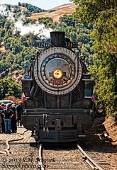 SP No. 2472 (Bob Stronck) Tags: alamedacounty steamlocomotive nilescanyonrailway southernpacificrailroad sunolca goldengaterailroadmuseum stronckphotocom southernpacificno2472 ©2013rmstronck