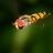ikerr