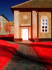 Invisible Door (IRG) (Aurelius Vox) Tags: park colour digital maria experiment infrared faux false helsingborg emulation irg aerochrome
