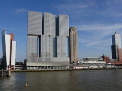 Rotterdam100