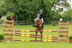 DSC07130_s (AndiP66) Tags: horse sports sport schweiz switzerland sony contest may saturday mai alpha concours pferd equestrian horsejumping samstag wettbewerb pfingsten springen 2015 f456 langenthal kantonbern pferdesport sonyalpha springreiten andreaspeters cantonofbern pferdespringen sony70400mm 77m2 sal70400g2 sony70400mmf456gssmii a77ii ilca77m2 77ii 77markii slta77ii pfingstspringen 23mai2015 23rdofmay2015