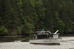 Schiff MS Go ( Motorschiff - Kursschiff - Baujahr 1979 - Fahrgste 120 ) auf dem Lac des Brenets - Lac de Chaillexon des Doubs ( Fluss - River ) bei Les Brenets im Kanton Neuenburg der Schweiz und Frankreich (chrchr_75) Tags: chriguhurnibluemailch christoph hurni schweiz suisse switzerland svizzera suissa swiss chrchr chrchr75 chrigu chriguhurni mai 2015 hurni150514 albumdoubs doubs fluss river bach creek natur nature albumzzz201505mai schiff kursschiff schiffahrt kursschiffahrt passagierschiffahrt passagierschiff skib ship alus bateau    schip fartyg barco albumschweizerkursschiffe