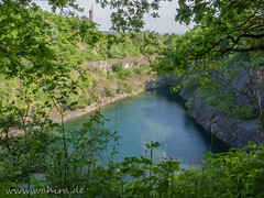 "20150516-38879.jpg • <a style=""font-size:0.8em;"" href=""http://www.flickr.com/photos/55428297@N00/17714155556/"" target=""_blank"">View on Flickr</a>"