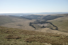 22nd April 2015 Brecon Beacons SDP2M 081 (Parishes of the Buzzard) Tags: uk trees mountain mountains grass wales rural forest walking landscape spring scenery walks view path forestry walk scenic peak scene valley views april welsh brecon beacons resevoir valleys foveon 2015 resevoirs pentwyn neuadd sigmadp2merrill