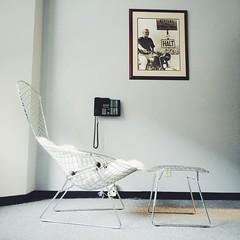 Bertoia Bird chair taken with my iPhone (hhdoan) Tags: modern chair furniture bertoia knoll midcenturymodern midcentury chairporn