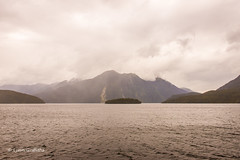 An overcast Doubtful Sound D61_6771.jpg (Mobile Lynn) Tags: newzealand mountain water landscape coast moody sound southland landscapephotography outdoorphotography