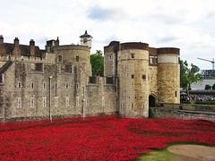 Poppies at the Byward Tower (jere7my) Tags: greatbritain vacation england london castle history memorial unitedkingdom wwi treasury historic belltower prison worldwari poppies soldiers walls fortifications moat fortress englishhistory arrowslits toweroflondon veterans artinstallation 1066 casualties commemoration 2014 centenary royalmint wardead thetoweroflondon crenelations tompiper bywardtower hermajestysroyalpalaceandfortress paulcummins towerpoppies bloodsweptlandsandseasofred 888246 ceramicpoppies weirdlittleperchycupola