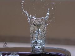 Splash Photography (Mohammed Alborum) Tags: camera canon photography m arab syria splash canon50mm18 الامارات تصوير ابوظبي العرب مصورين أبوظبي المقطع سبلاش canon70d ميلينيوم mohammedalborum انستغرامي