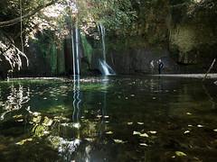 Green Lagoon...