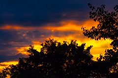 Drama at dawn (Steve-h) Tags: nature natura naturaleza natural dawn sunrise trees clouds blue red orange gold yellow black colour colours today 101016 digital exposure dublin ireland europe autumn fall 2016 steveh