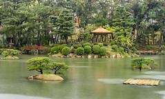 Shukkeien garden (Picardo2009) Tags: flickr hiroshima japan japon shukkeien shukkeiengarden japanese jardin jardinshukkeien jardinjapones naturaleza nature plantas plants stock travel picoftheday perfection