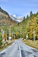DSC_1043 (VictorSZi) Tags: romania autumn toamna october octombrie transfagarasan explore travel