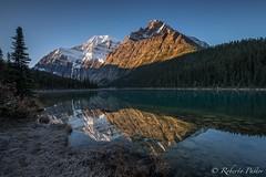 Cavell Lake - Jasper (robertopastor) Tags: alberta amrica canada canadianrockiesmountain canad cavelllake fuji jasper montaasrocosas robertopastor viaje xt2 xf1024mmf4 cavell lake