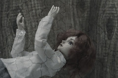 IMG_1893 (Alighieri_Floren) Tags: bjd abjd doll dollleaves wish
