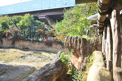 WKK_0543 (kongkham35@hotmail.com) Tags: tennojizoo nikond7000 nikon1685 osaka japan
