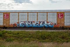 (o texano) Tags: texas graffiti trains freights bench benching night gns