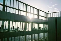 ( ourutopia) Tags: film fuji fujifilm fujicolor 400    yashica t2 t3 t4 t5 filmphotography analog analogphotography sky window view observatory tower building sunset guy people abeno abenoharukas osaka japan