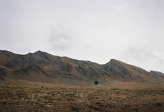 (louis de champs) Tags: minoltasrt101 mdrokkor45mm12 film kodak portra160 morocco mountains desert tree clouds rocks