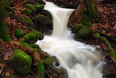Little Mountain Fall (gatorinsc) Tags: huntsville alabama water fall montesano mountain stream