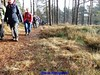 """2016-11-30       Lange-Duinen    Tocht 25 Km   (64) • <a style=""""font-size:0.8em;"""" href=""""http://www.flickr.com/photos/118469228@N03/31227893281/"""" target=""""_blank"""">View on Flickr</a>"""
