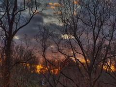 PB270010_Aurora2017_HDR (susandmanners) Tags: sunset fallsunset hdrsunset