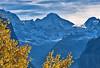Lauterbrunnen , Murren, the walls of the Jungfrau mountain  , the summits of the Breithorn , the Tschingelhorn and the Gspaltenhorn.A view from Wengen. Canton of Bern, Switzerland.  No. 1348. (Izakigur) Tags: alps alpes alpi berner oberland bern berne ch canton d700 die schweiz europa feel lauterbrunnen wengen mürren breithorn tschingelhorn tree svizzera feelings emotions heart mother memories nikond700 nikkor2470f28 lasuisse laventuresuisse dieschweiz swiss suizo suisia suiza suïssa switzerlnad schnee such berneroberland berna cantonofbern kantonbern jungfrau topf25 topf400 100faves 200faves 250faves