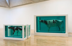 Damien Hirst - Mother and Child (Divided), Exhibition Copy 2007 (original 1993), 2007