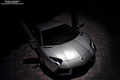 Lamborghini Aventador (Peter Tromboni Photography) Tags: italian nikon photoshoot florida peter sarasota lamborghini exotics supercars v12 tromboni hypercars aventador lp7004