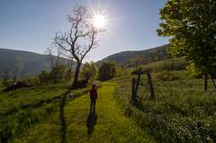Mountain sun (DWO630) Tags: sun memorialdayweekend highlandcounty 2013 pentaxk01