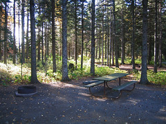 Judge CR Magney State Park campground site