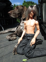 Dog/doll (jSarie) Tags: toys dolls tan bjd alpha abjd balljointed bjds dollzone