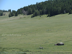 Far Far Away (RootsRunDeep) Tags: ranch house mountain abandoned home wooden log decay homestead wyoming bighornmountains