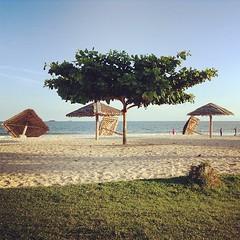 Gazebo Down #instagram #beach #nature #balikpapan #instagramers #igers #instadaily #instapic #picoftheday #photooftheday #pic #instagood #gazebo (Chaz Tumbelaka Photography) Tags: beach square gazebo squareformat balikpapan iphoneography instagramapp uploaded:by=instagram foursquare:venue=4be280ef99feb713f0e281f6