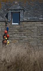 Maison, Beg ar Vir (StefanoPiemonte) Tags: bretagne breizh maison francia bretagna 2013 lampaulplouarzel finistére stefanopiemonte bwgarvir brolèon