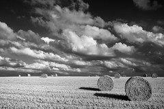 late summer (pierre hanquin) Tags: light summer sky bw cloud sun field clouds landscape geotagged sol