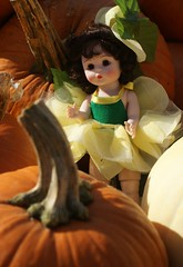 Wendy in Pumpkin Patch (gomoddolls) Tags: madame modern doll convention alexander collectors wendy mdcc 2013