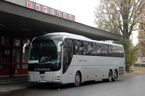 LVX-815