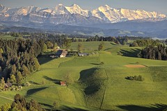 IMG_3476 (Role Bigler) Tags: alps nature landscape schweiz switzerland spring natur alpen landschaft emmental lueg frühling