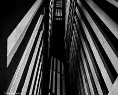 View Up the Stairwell (that_damn_duck) Tags: abandoned sc southcarolina asylum mentalhospital urbex lunaticasylum urbanexplorer