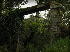 Torre y Pazo de Guimarei (carlinhos75) Tags: architecture arquitectura nikon decay ruinas decayed abandono deterioro pazo p5000 guimarei
