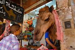 Camel meat shop (winnieyklai) Tags: market camel morocco fez fes camelhead meatstore